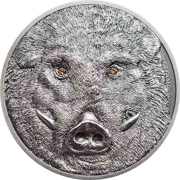 Sus scrofa,500 τ, 1 oz, 38, 61 χιλ., Αντίκ φινίρισμα, Ασήμι .999, 2018, Μογγολία 2017 cti